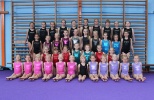 Diss Spring Gymnastics @ Diss High School Gymnasium